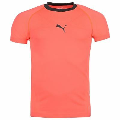 Popular Brand Puma Evo Knit Training T-shirt Mens Coral Gymwear Top Tee Shirt Structural Disabilities Clothing, Shoes & Accessories