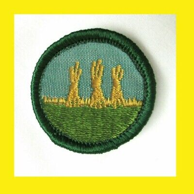 OUTDOOR SAFETY 1955 Girl Scout BADGE 3 Haystacks Trail Signs Patch Combine Ship