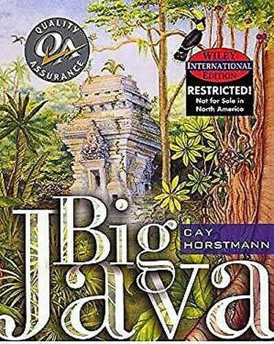 Big Java Taschenbuch Koralle S.