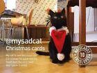 My Sad Cat Christmas Cards Tom Cox Graffeg 9781909823457
