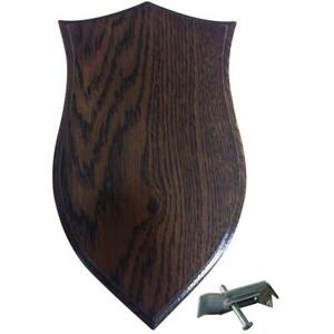 BushWear-Solid-Oak-Roe-Skull-Shield-Small