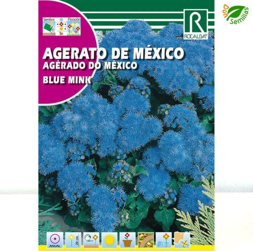 Agerato de Mexico Azul 1 gr // 4.000 semillas Ageratum houstonianum seeds