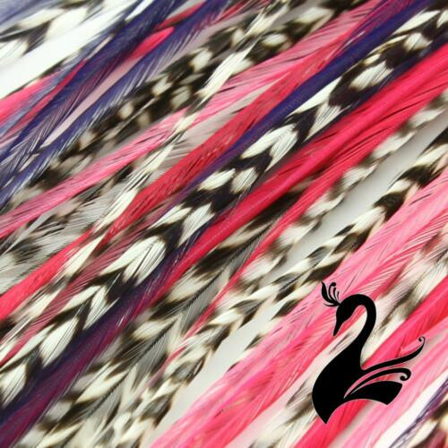 Designer 3 Feathers Palmdale X-Large 25-30cm // 10-1 Feather Hair Extensions