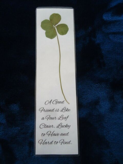 Genuine Giant Four 4 Leaf Clover Laminated Lucky Charm Bookmark Shamrock (6)