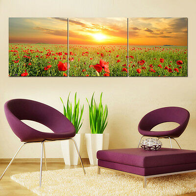 HD Canvas Prints Poppy Flowers Unframed Picture Painting Wall Art Poster Decor