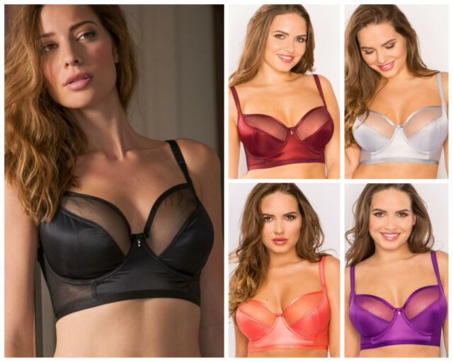 Pour Moi 41000 St Tropez Lace Underwired Padded Bra Slate//Raspberry 30-38 A-F