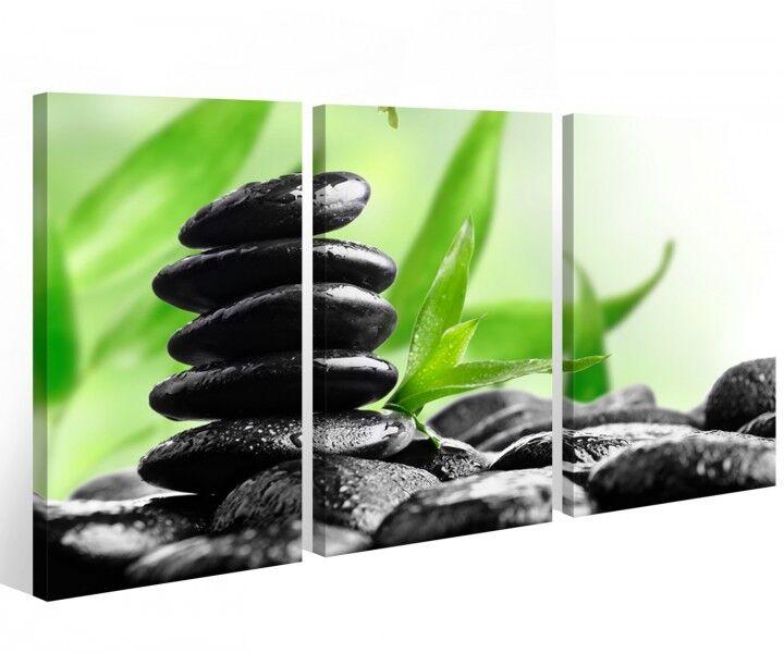 Leinwand 3 tlg. Pflanze Steine Wellness Feng Shui Bilder grün Wandbild 9A571