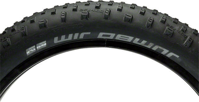 Schwalbe Jumbo Jim SnakeSkin  Tubeless Easy Tire 26 x 4.0 EVO Folding Bead  low price