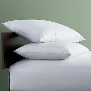 Shopgalore Relaxwel Fiberfill Vacuum Pillow Filler (RWC-01)