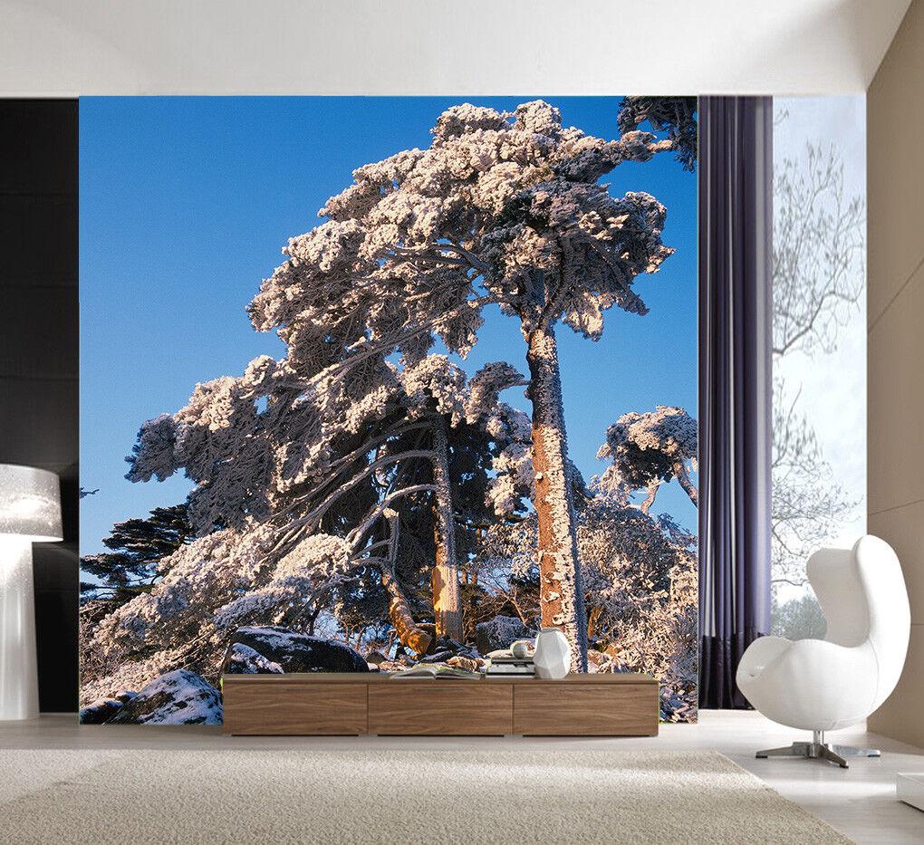 3D Schnee Kiefern Stein 854 Tapete Wandgemälde Tapete Tapeten Bild Familie DE