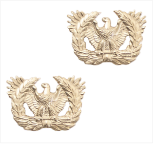 WARRANT OFFICER ARMY OFFICER BRANCH OF SERVICE COLLAR DEVICE 22K GOLD PLATED