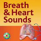 Auscultation Skills: Breath & Heart Sounds by Jessica Shank Coviello (Paperback, 2013)
