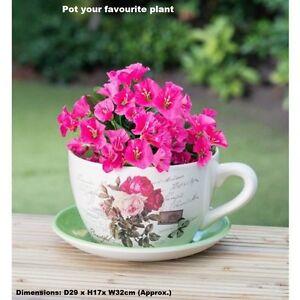 Vintage Belle Céramique Tasse à Thé & Soucoupe Jardiniere-traditionnel Rose-afficher Le Titre D'origine