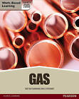 NVQ Level 3 Diploma Gas Pathway Candidate Handbook: Technical Knowledge for Gas Operatives by JTL Training (Paperback, 2013)