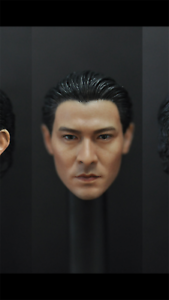 1//6 Scale Andy Lau Head Sculpt Lau Tak Wah Model For Figure body