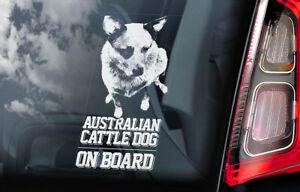 Australiano-Ganado-Perro-Coche-Ventana-Pegatina-Cattledog-Acd-Placa-Firmar