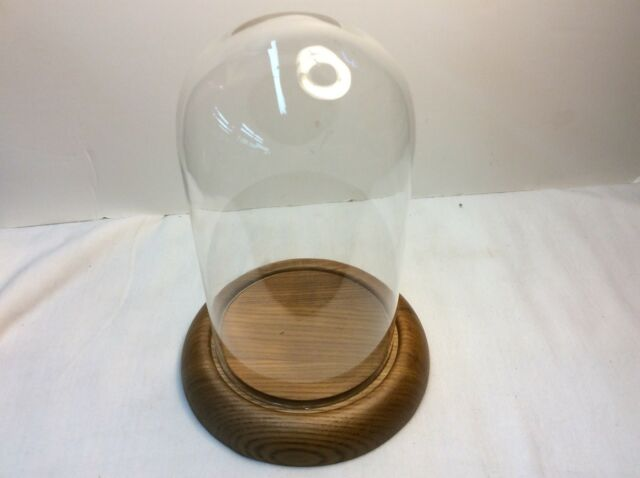 Clear Glass Display Dome Cloche Bell Jar With Wooden Base for DIY Decoration