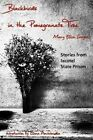 Blackbirds in the Pomegranate Tree: Stories from Ixcotel State Prison by Mary Ellen Sanger (Paperback / softback, 2013)