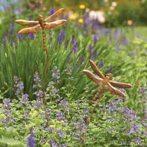 Image Is Loading Dragonfly Duo Garden Stake Copper Finish Yard Art