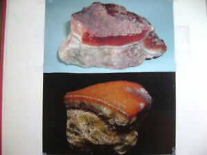 COLLECTION-A-A-NATURALLY-FORMED-034-BBQ-PORK-034-ROCK