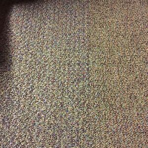 Interface Flor Carpet Tiles Guava