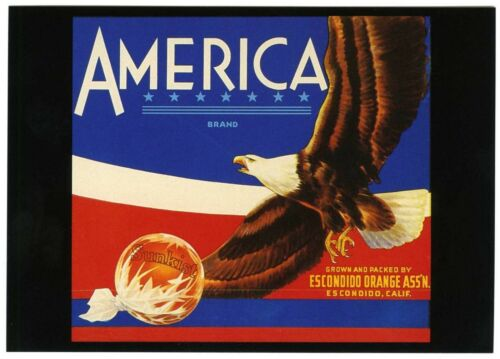AMERICA~EAGLE in FLIGHT~HISTORICAL AUTHENTIC FRUIT CRATE LABEL~NEW 1986 POSTCARD