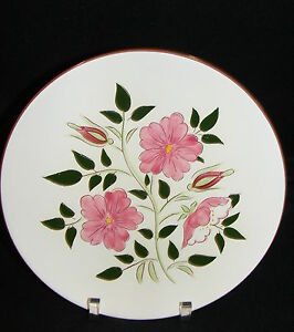 Vintage-Stangl-Pottery-Trenton-N-J-Wild-Rose-10-034-Dinner-Plate