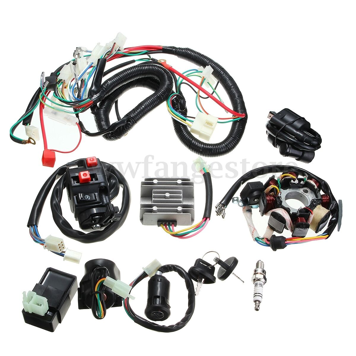 Full Wiring Harness Loom Solenoid Coil Regulator CDI 150 200 250cc on