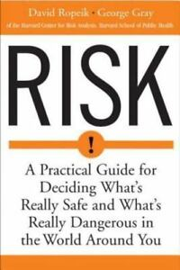 Risk-A-Practical-Guide-for-Deciding-What-039-s-Really-Safe-and-What-039-s-Re-ExLibrary