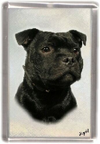 Staffordshire Bull Terrier Dog Fridge Magnet No.10 by Starprint
