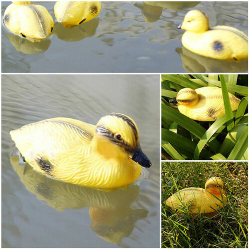 Floating Duck Ducklings Bassin Poisson Ornement Plastique Leurre Mallard Lifesize Jardin