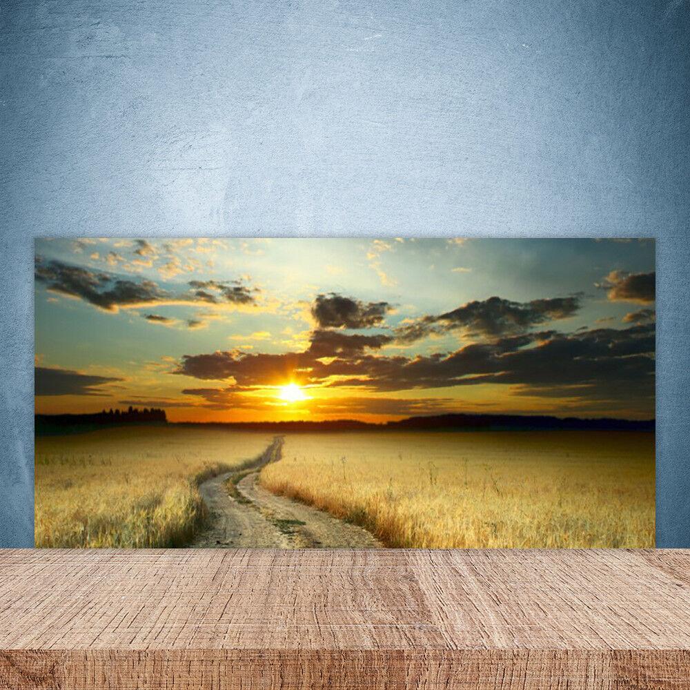 Crédence de cuisine en verre Panneau Paroi 100x50 Paysage Chemin Prairie