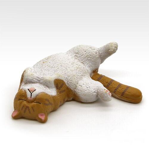 Panda/'s ana Zoo Zzz Sleeping Animal 4.5 Special Color Ver Neko Cat Figure