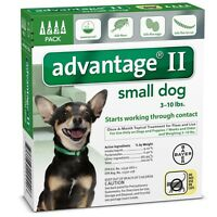 4 MONTH Advantage II Flea Control GREEN (for Dogs under 10 lbs)