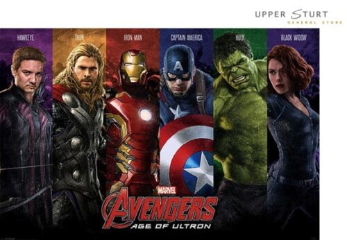 Avengers Age Of Ultron Team Poster 75 Size 61 x 91.5cm