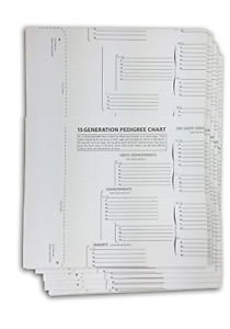 TreeSeek 15 Generation Pedigree Chart5 PackBlank Genealogy Forms for and