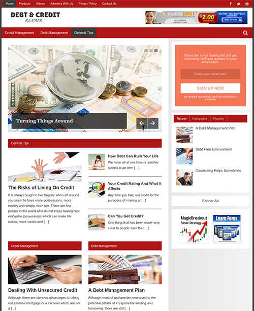 DEBT & CREDIT GUIDE - Fully Featured Niche Website For Sale - Newbie Friendly