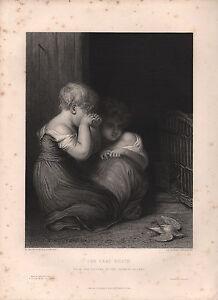 1853 VICTORIAN PRINT ~ THE DEAD ROBIN ~ THOMPSON