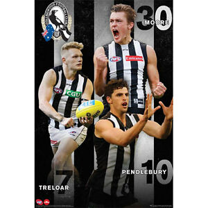 AFL-Collingwood-Magpies-Players-POSTER-61x91cm-NEW-Football-Footy-Treloar