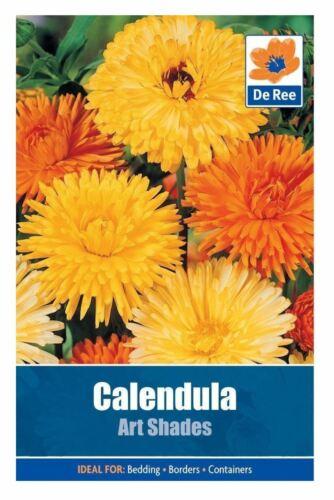 De Ree Seeds Collections Flower Seeds Calendula Art Shades