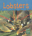 Read and Learn: Sea Life - Lobsters by Lola M. Schaefer (Paperback, 2004)