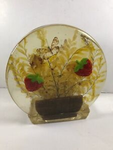 Vintage Resin Acrylic Vomit Art Napkin Holder Strawberries Butterflies |  eBay