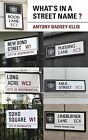 What's in a Street Name? by Antony Badsey-Ellis (Paperback, 2011)