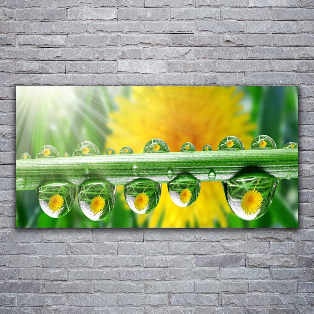 Verre Imprimer Wall Art Image 120x60 Photo tige Dew Drops Floral