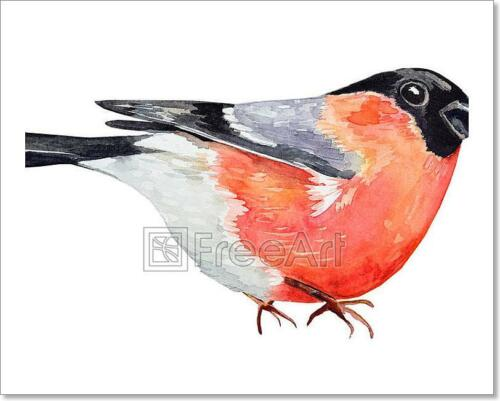 Watercolor Drawing Of Bird Art Print Home Decor Wall Art Poster - C