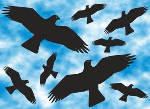 Voegel-Vogel-Aufkleber-8-Stueck-Fensterbild-Wintergarten-Sticker-KITE-AN5-1