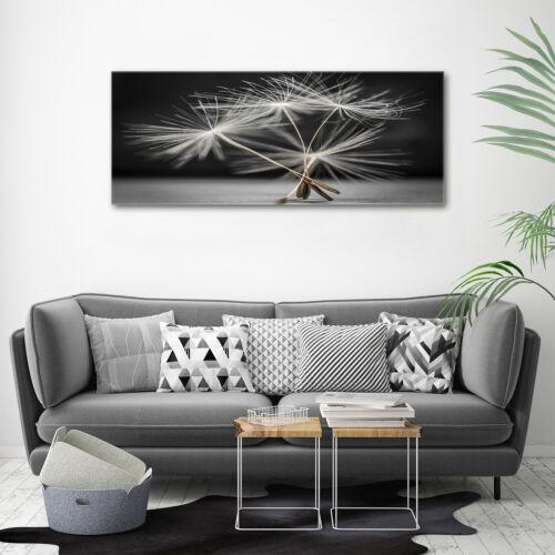 Acrylglas-Bild Wandbilder Druck 125x50 Deko Blumen /& Pflanzen Pusteblume