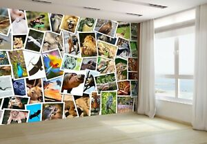 Different-Animals-Collage-Wallpaper-Mural-Photo-15803964-budget-paper