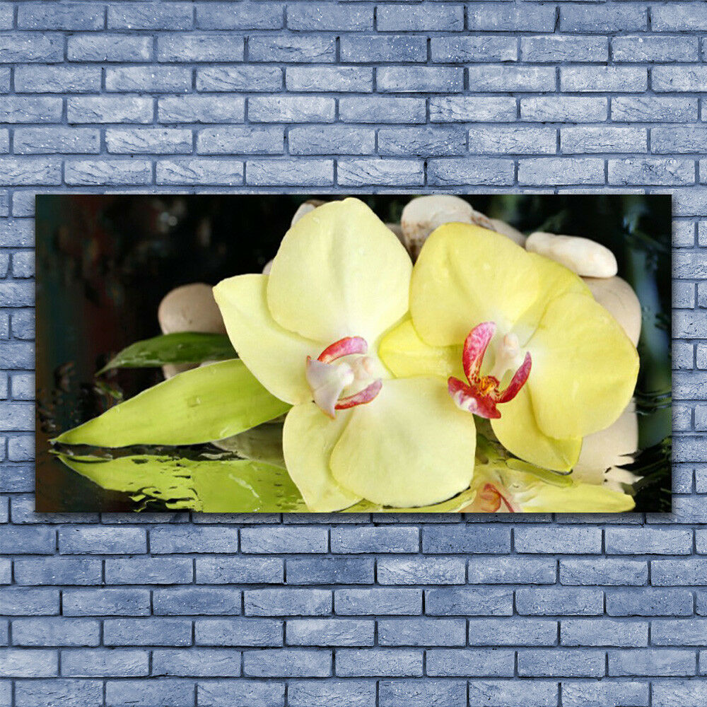 Acrylic print Wall art 140x70 Image Picture Petal Floral