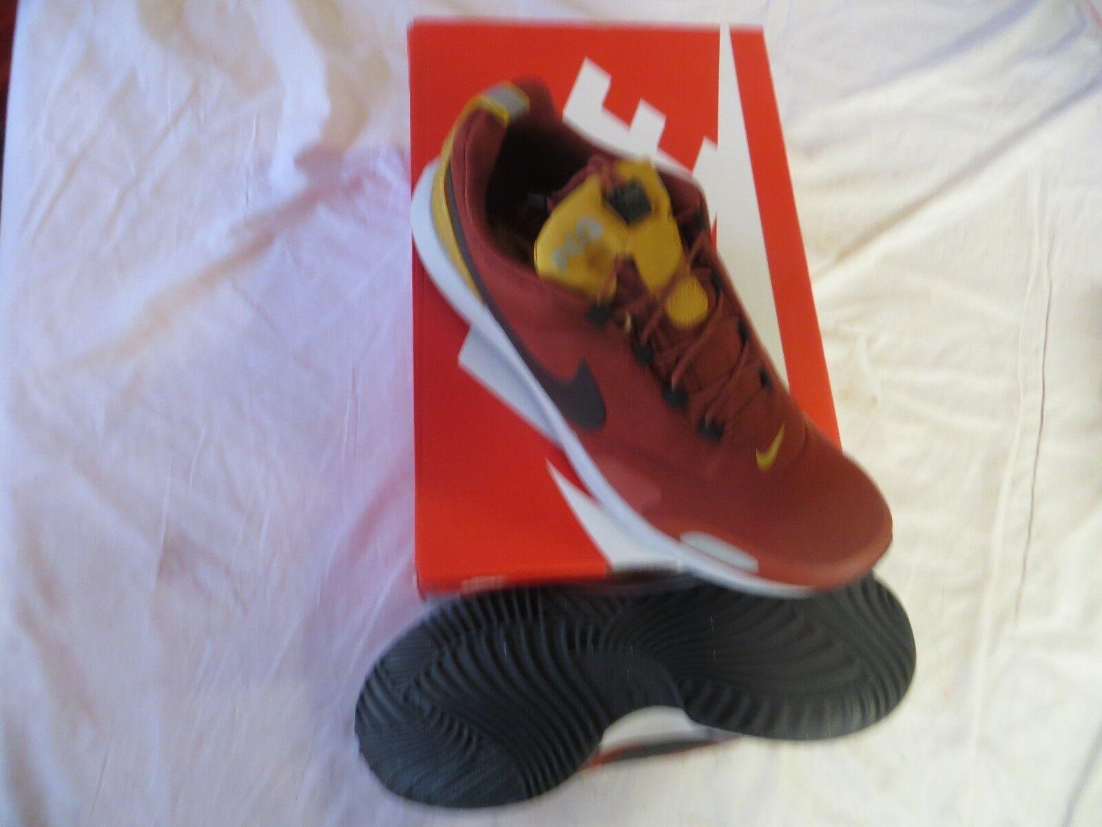 Nike men's air pegasus A/T Sz 10 Mars Stone/Black (924469 601) Retail  120 NIB